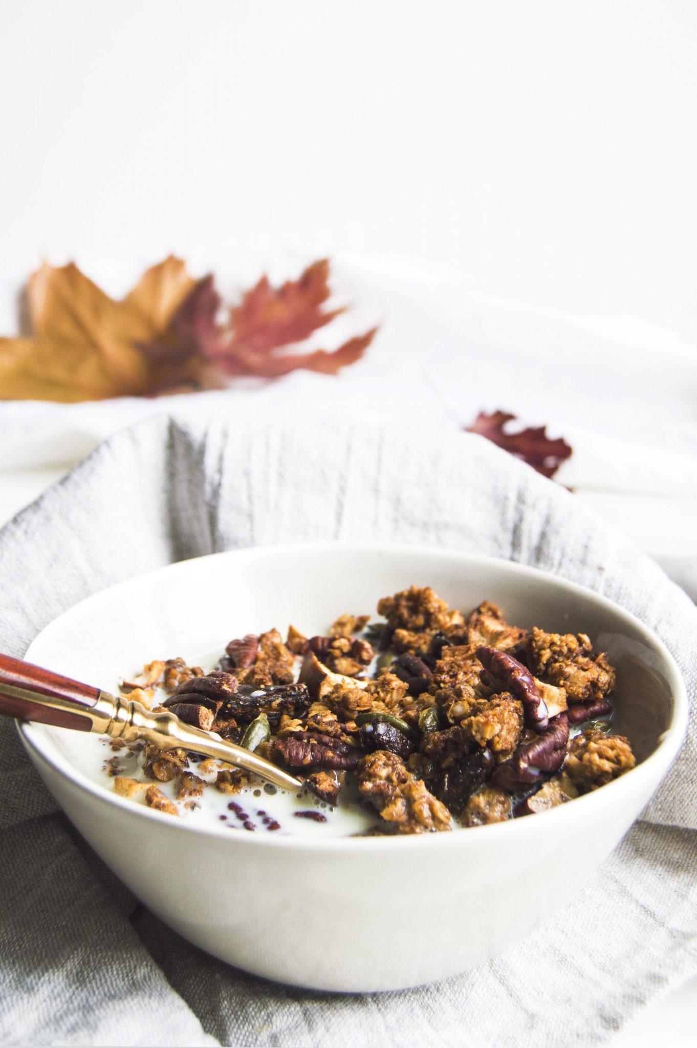 Vegan Autumn Spiced Granola
