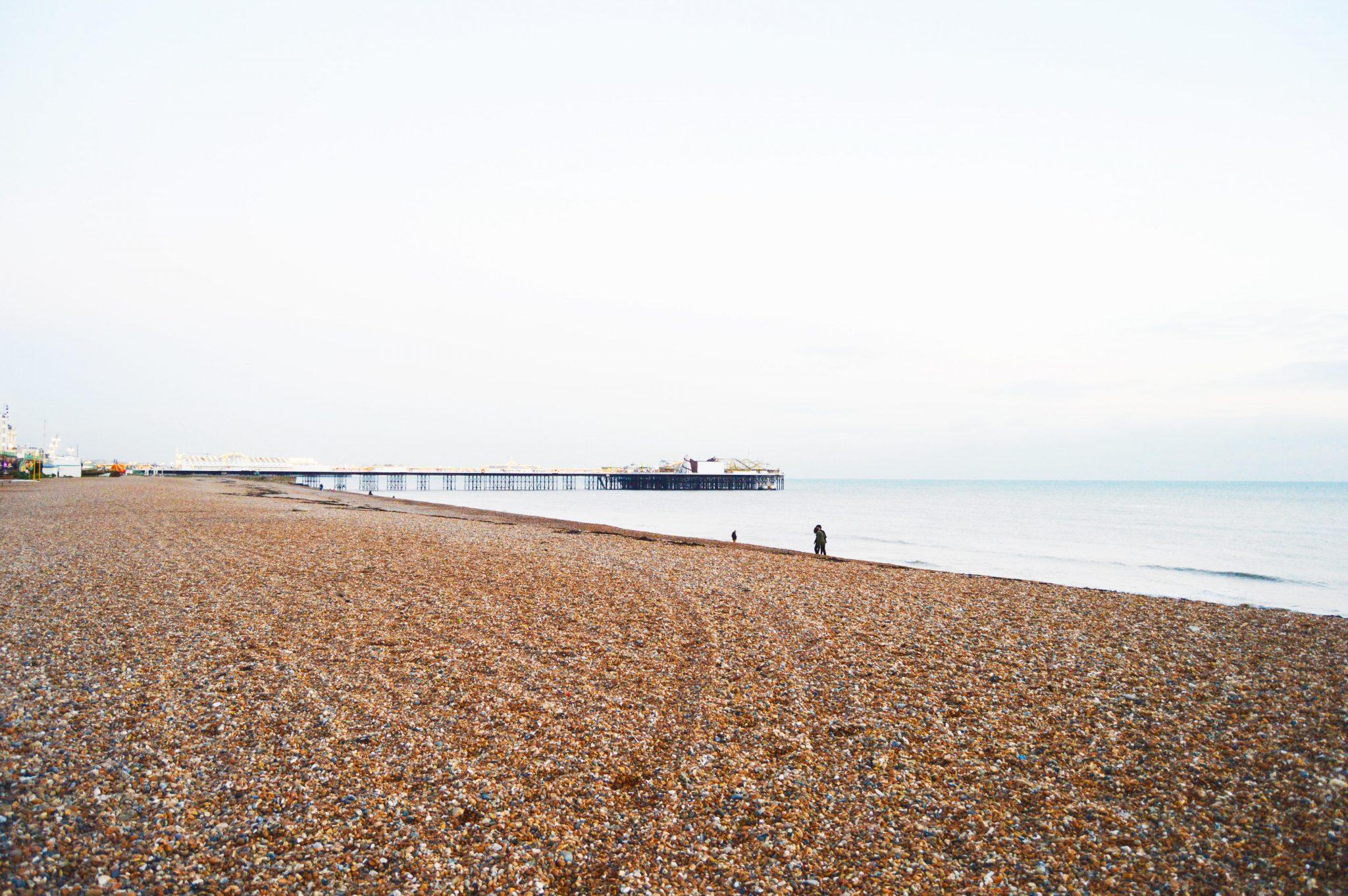 A Vegan in Brighton – VBites