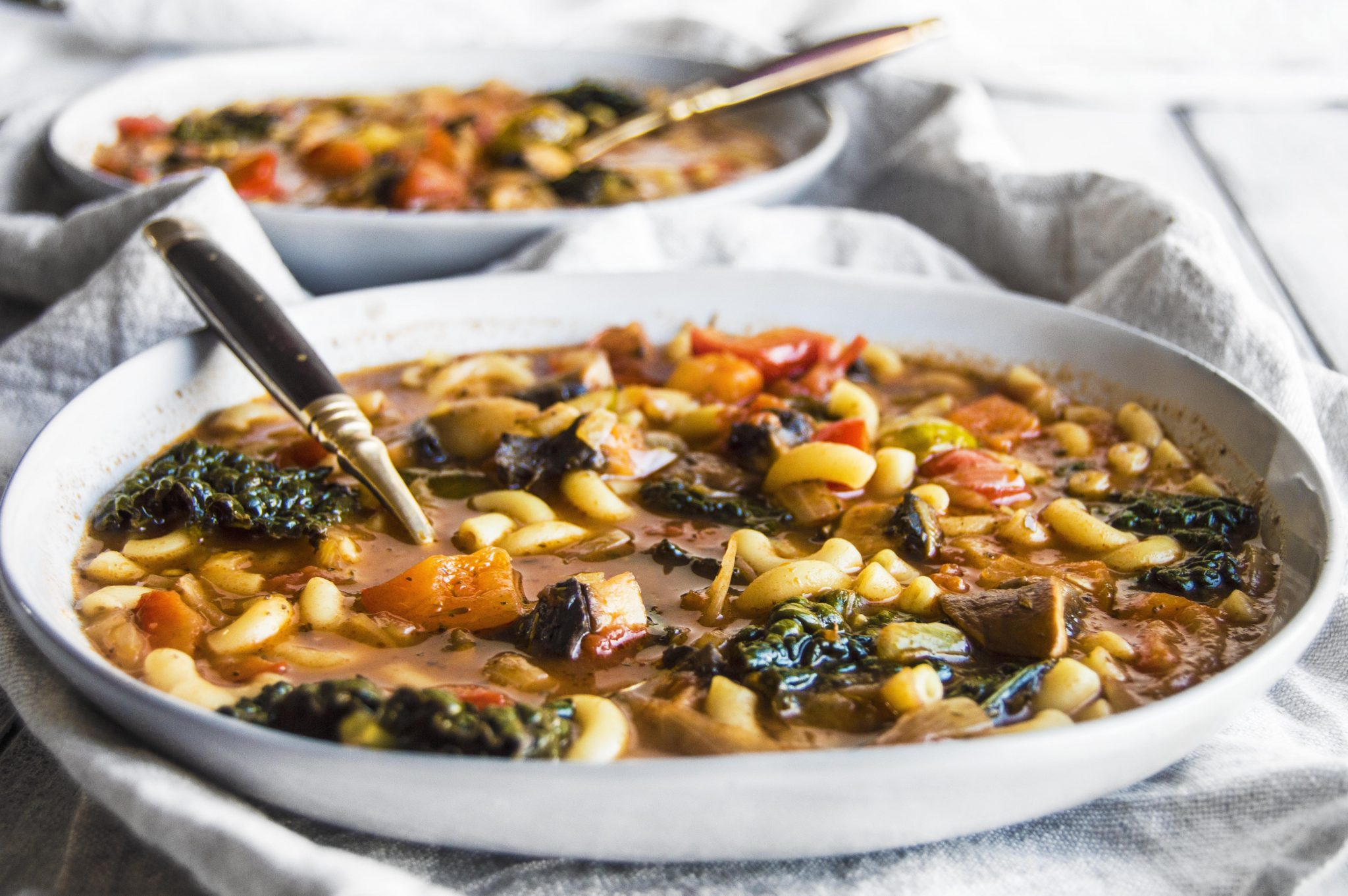 Vegan Minestrone with Macaroni